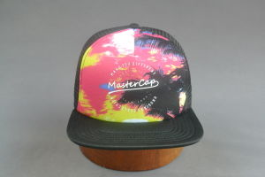 Adult Size Mesh Cap Snap Back Hat with Thick Printing pictures & photos