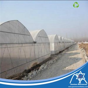 PP Spunbond Nonwoven Fabric for Greenhouse Cover pictures & photos