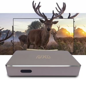 New Model Q1 1g+8g Android TV Box pictures & photos