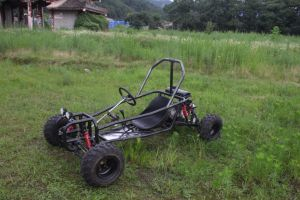The Seat Can Be Removed Foward and Backward 150cc Go Kart pictures & photos
