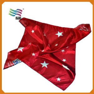 Custom Printed Satin Scarf for Election Square (hy34) pictures & photos