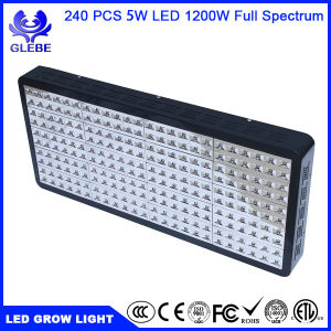 Glebe LED Grow Light 600W Full Spectrum UV IR Plant Grow Lamp for Indoor Greenhouse Garden Plants Veg and Flowering pictures & photos