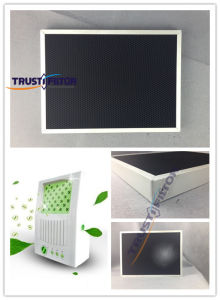 Aluminum Honeycomb Ozone Removal Filter Air Filter pictures & photos
