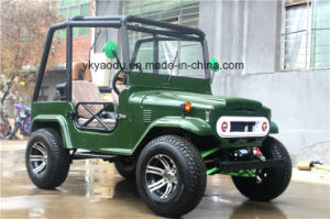 Hot Selling 2017 Motorcycle EEC 250cc ATV for Farm pictures & photos