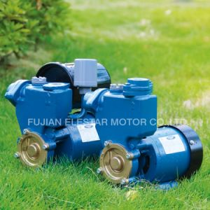 Self-Priming Peripheral Pump with Cover (PS-126) pictures & photos