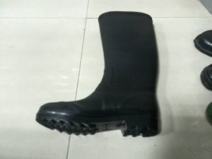 Shoes Mold for Plastic PVC Rainboots pictures & photos