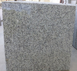 Light Grey Granite Tiles Flooring pictures & photos