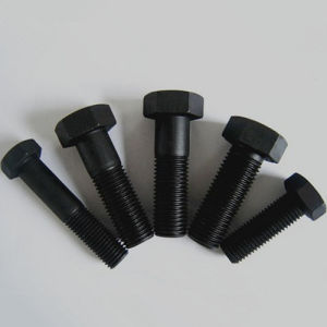 Hex Bolts for DIN558/DIN601 pictures & photos