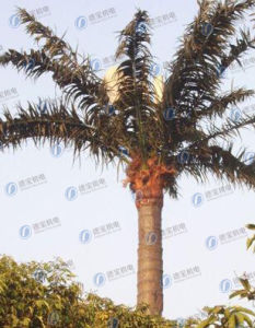 Durable Camouflaged Coconut Tree Telecom Tower pictures & photos