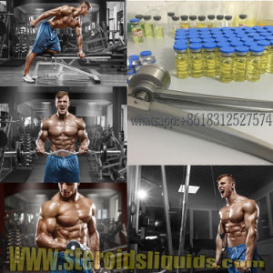 Customized Injectable Steroids Oil Testosterone Undecanoate for Bodybuilding 5949-44-0 pictures & photos