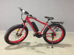 Most Famous Electric Bike Mountain Type Ebike with 48V 350W MID Drive Motor pictures & photos