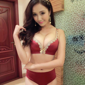 Hot Sale High Quality Lady Sexy Bra Sets pictures & photos