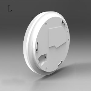 IP54 Ceiling Light/Ceiling Light pictures & photos