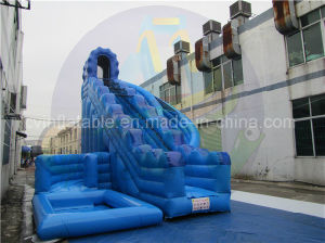 Hot Sales Giant Inflatable Water Slide for Adult pictures & photos