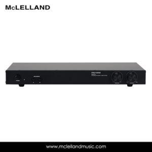 100W X2 Class D Amplifier (PRO 1000D) pictures & photos