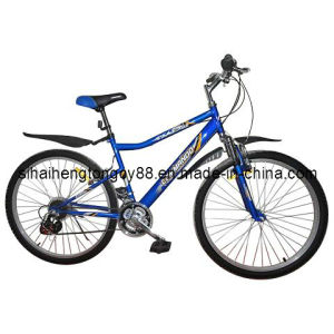 Steel Mountain Bicycle with Lowest Price MTB-049 pictures & photos