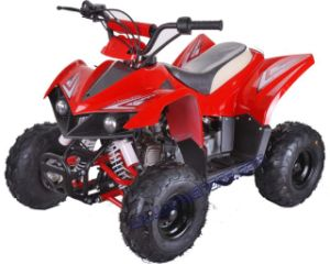 110cc New ATV /Quad (ATV-110Q)
