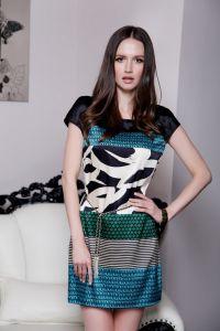 Ladies Silk Dress (Ogt-A882)