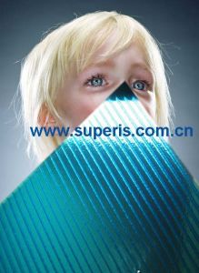 Polycarbonate Two-Wall Hollow Sheet (STW2)