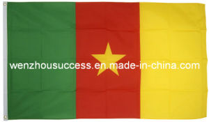 Cameroon National Flag pictures & photos