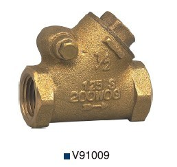Non Lead/Low Lead Bronze/Brass Y Type Check Valve (V91009) pictures & photos