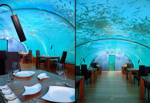 Underwater Restaurant/Acrylic Tunnel pictures & photos