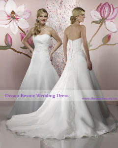 Bidal Dress & Bridal Gown (Hs22-Mic)