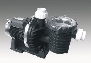 Bsca Series Swimming Pool Pump (BSCA200)