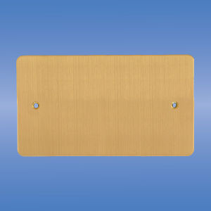 Double Blank Plate, Flat Brushed Brass pictures & photos