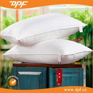Custom Cheap Bed Rest Pillow (DPF060961) pictures & photos