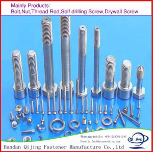 Marine Hardware Hex Nut Bolt and Nut pictures & photos