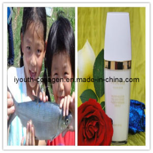 GMP, Top 100% Natural Collagen Peptide Whitening Essence pictures & photos