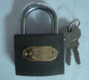 Grey Iron Padlock with Brass Cylinder (TL365-B) pictures & photos