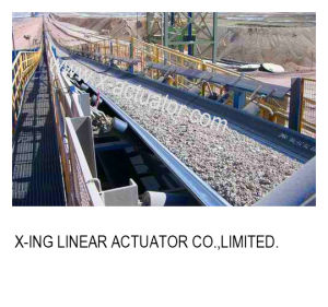Industry Belt Conveyor pictures & photos