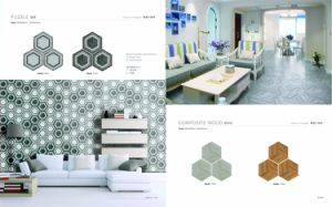 Hexagon Ceramic Tile Puzzle Series pictures & photos