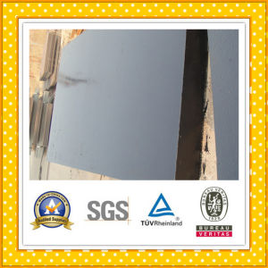 Steel Plate / Steel Sheet pictures & photos