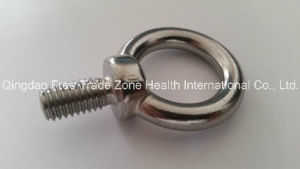 Ss Eye Bolt with T Nut pictures & photos