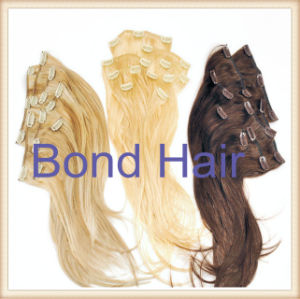 Factory Price Indian Remy Clip in Human Hair Extension pictures & photos