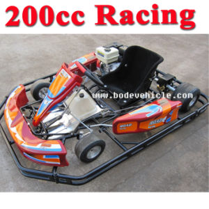 New Bode 110cc/150cc/200cc/250cc EEC Go Kart/Racing Go Kart Parts/Go Karting (MC-473) pictures & photos