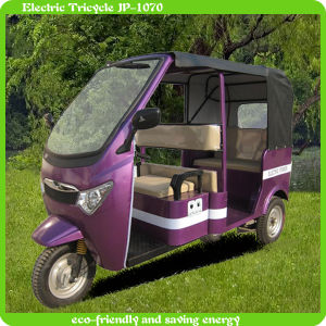 New Design Three Wheel Electric Vehicle with Cheap Price