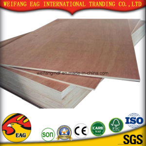 Okoume Face/Back with Good Quality Plywood pictures & photos