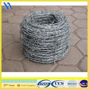 Electro Galvanized Barbed Wire for Fencing pictures & photos