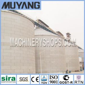 Stainless Steel Storage Silo 500t