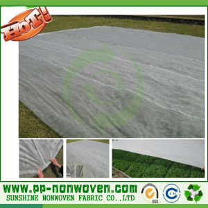 Degradable PP Nonwoven Ground Cover pictures & photos