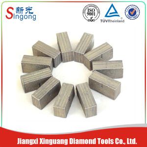 Diamond Tools and Segment Granite Manufacturer Free Sample pictures & photos