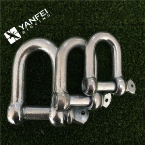 Yfed European Type Large Dee Shackle pictures & photos