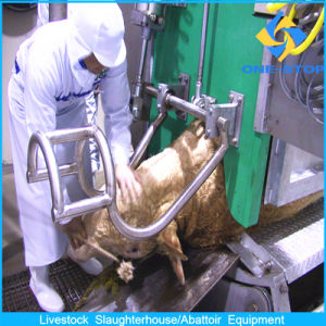 High Level Cow Slaughter Line Equipment pictures & photos