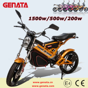 1500W/500W/200weec Folding Electric Bike (GM890E)