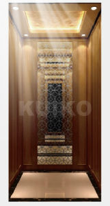 Villa Elevator Excellent in Quality and Decoration pictures & photos