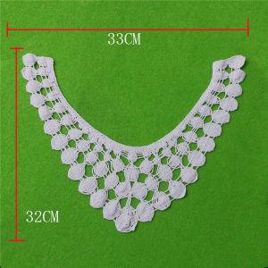 White Lace Cotton Lace Collar for Dress Decoration (cn81) pictures & photos
